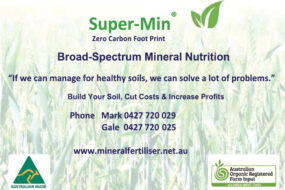 Seeds, Pastures and Fertiliser